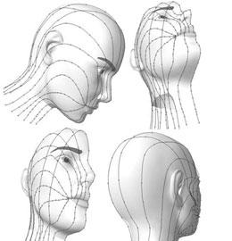 Как оказать первую медицинскую помощь при ранении мягких тканей лица?