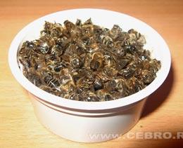 Что такое пчелиный подмор?