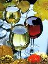 Какое вино к чему подавать?