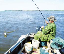 Чем прикормить рыбу для удачной рыбалки?