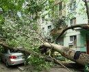 Как вести себя при урагане?