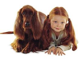 Для чего нам нужны домашние животные?