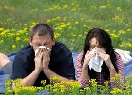 Что такое аллергия?