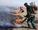 Как тушат торфяные пожары?