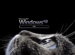 Как установить другой экран загрузки Windows?