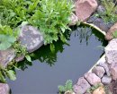 Как сделать искусственный пруд?