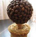 Как сделать кофейное дерево своими руками?