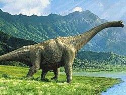 Как отличить динозавра от динозаврихи?