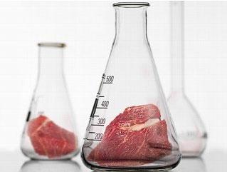 Какой вкус искусственного мяса?