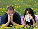 Чем опасен аллергический насморк?