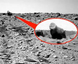 «Горилла» на Марсе?