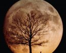 Как наказать луну?