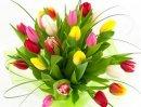 Как выбрать качественные цветы?